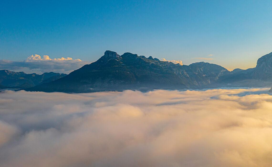 Nebeldecke August Narzissen Vital Resort 13